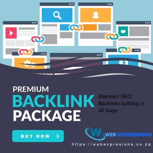 premium backlink building package